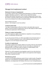 Manager level employment contract