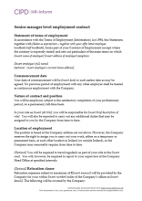 Senior manager level employment contract